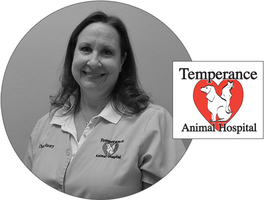 Dr. Ravary from Temperance Animal Hospital
